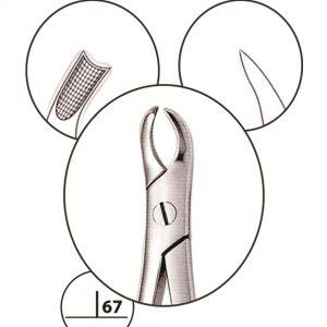 Upper molar  special L 90