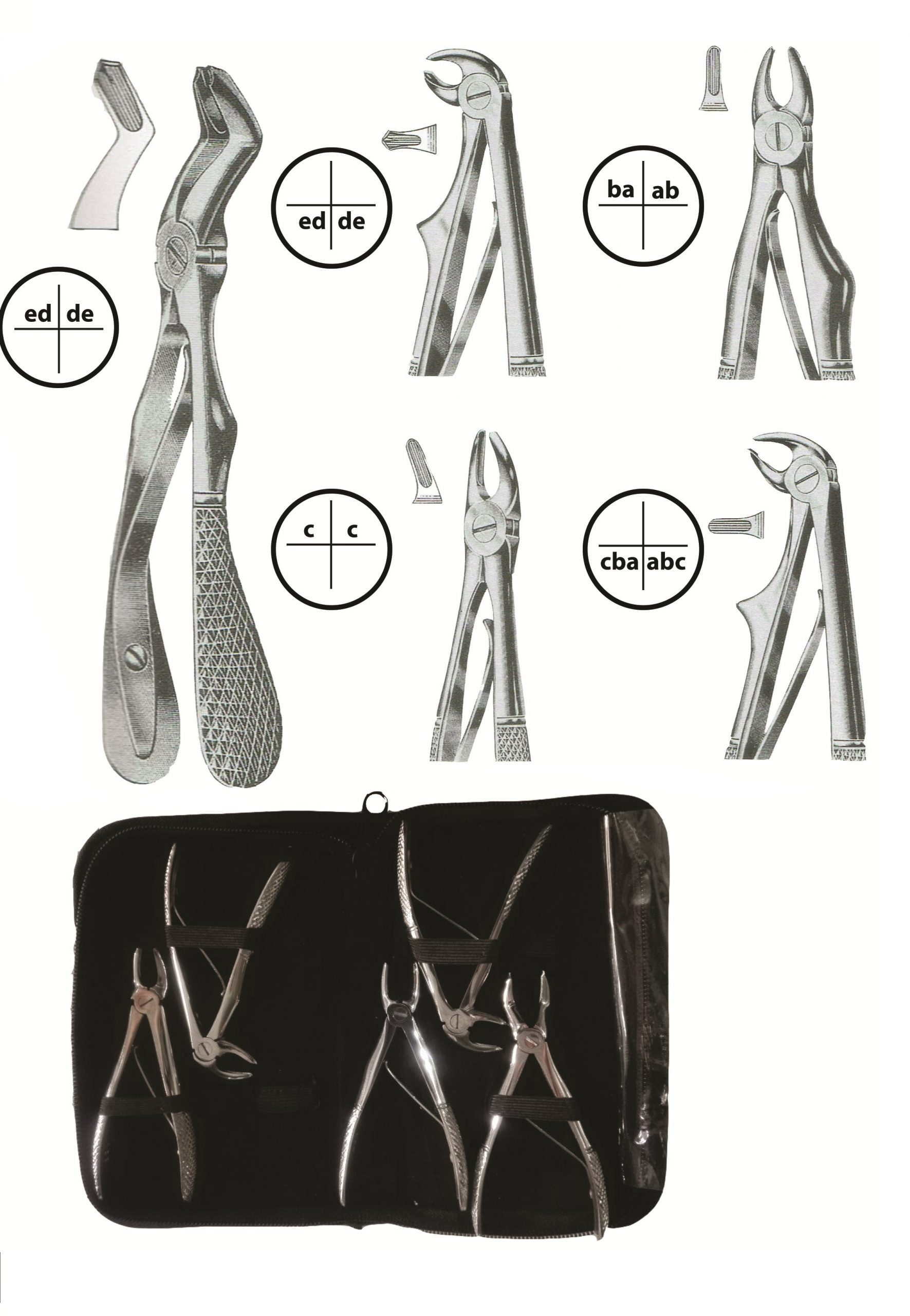 Pedo Forceps Kit of 5 Pieces
