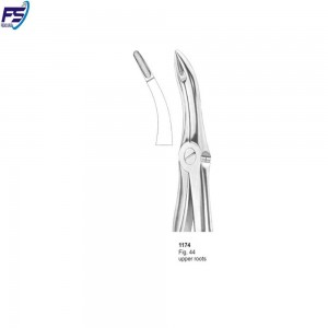 Upper Remaining Root Forceps #44