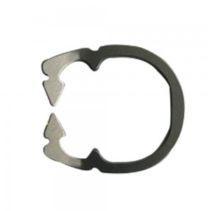 Elephant Sectional Matrix Ring